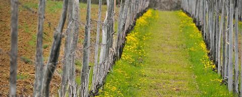 Le blog www.deuiletesperance.blogspot.be